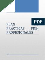 PLAN DE PRÁCTICAS-PETITA LUISA VASQUEZ FLORES 2.docx