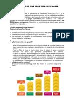 PROGRAMAS DE GOBIERNO.docx