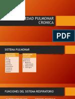 ENFERMEDAD PULMONAR CRONICA(1).pdf