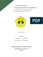 MAKALAH  (HUKES&ETIKA) PENYELENGGARAAN PRAKTIK BIDAN.docx