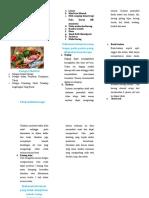leaflet knf.doc