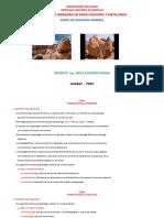 DIAPOSITIVAS DE GEOLOGIA GENERAL.pptx