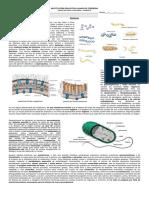 Guia Ejercicios Configuracion Electronica (1)