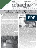 Tlacuache 608.pdf