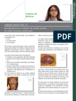 patologia ocular veterinaria