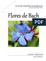 01 UNIDAD VI Material BACH + Ejercicio de Autoevaluacion.pdf