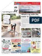 Platinum Gazette 22 February 2019