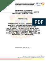 288391914-TDR-PERFIL-TECNICO-SEGURIDAD-CIUDADANA-2-doc.doc