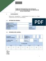 Diresa - Modelo de Informe Vst Para Sso-digesa - 2018