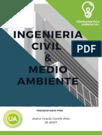 Informe Problematica Ambiental (2)