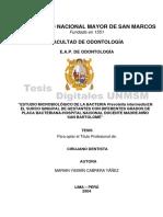 tesis odontologia en ebarazadas.pdf