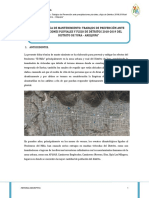 01 Memoria Descriptiva Precipitaciones Pluviales 2018-2019