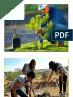 Protección Medio Ambiente Imprimir Pendiente