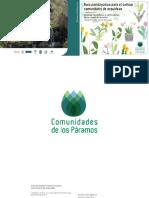 16_Proyecto de Orquideas