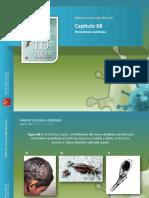 Apt Figuras c68 Parasitosis Cutanea