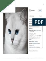 Coby the Cat Desktop