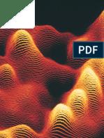 biology 11 Wolkow.pdf