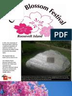 Cherry Blossom Festival Presentation 2019 Final