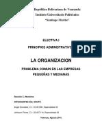 Organizacion en Empresa Aplicando Teoria de Fayol e ISO9000