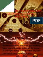 Proyecto de Transformación de Energía Química a Eléctrica
