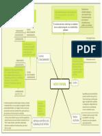 nexo causal.pdf