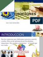 Diapositiva Emociones - Carlos Galindo Molle
