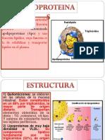 LIPPOPROTEINAS.pptx