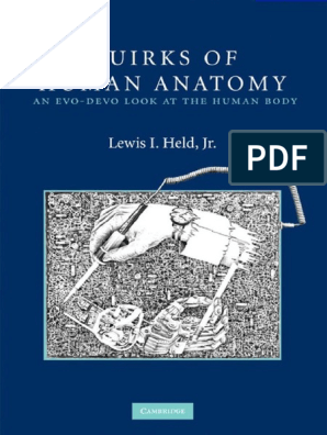 Lewis_I _Held__Jr]_Quirks_of_Human_Anatomy_An_Ev(BookSee org