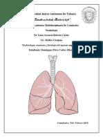 0_carlos respiratorio.docx
