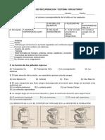 EVALUACION DE RECUPERACION DE SISTEMA CIRCULATORIO.docx