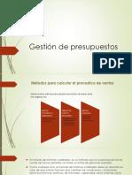 Word de Plan de Negocios Domingo (1)