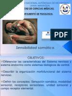 SENSIBILIDAD SOMATICA