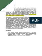 LPXTG.docx