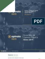 Encuesta Enero 2019 Opinaia