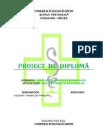 Proiect Diploma Asistent Farmacie - Supozitoare