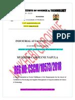 MUKHEBI CAROLYNE ATTACHMENT REPORT.doc