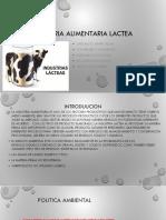 diapositivas-ind.-lactea-1