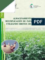 Ramos-Manual Almacenamiento...Papa Semilla