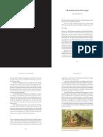 The_Petrification_of_the_Image.pdf