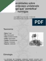 Generalidas Sobre Ophiocordyceps Unilateralis