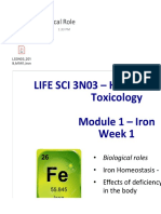 2 - Iron Biological Role