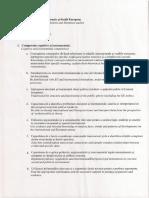 3.competente.pdf