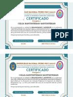 DOS CERTIFICADOS ORGANIZADORES Y ASISTENTES.pdf