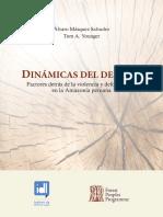 Dinámicas Del Despojo (IDL-FPP)_VFF