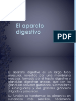 El Aparato Digestivo - Scribd