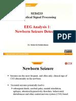 11 EEG Analysis 1-Newborn Seizure Detection