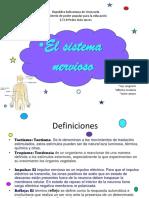 El Sistema Nervioso (1)