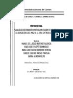PROYECTO IPP - LOS CANALES DE DISTRIBUCIONES DEL MAIZ1.docx