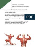 Anatomia y Fisiologia Docx de La Sangre