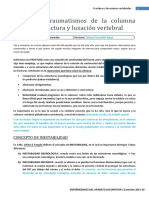 Columna.pdf